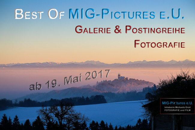 Best Of MIG-Pictures e.U. / Fotografie - Galerie und Postingreihe ab 19. Mai 2017